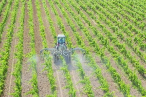 Un-nouveau-plan-pour-reduire-l-usage-agricole-des-pesticides_article_popin